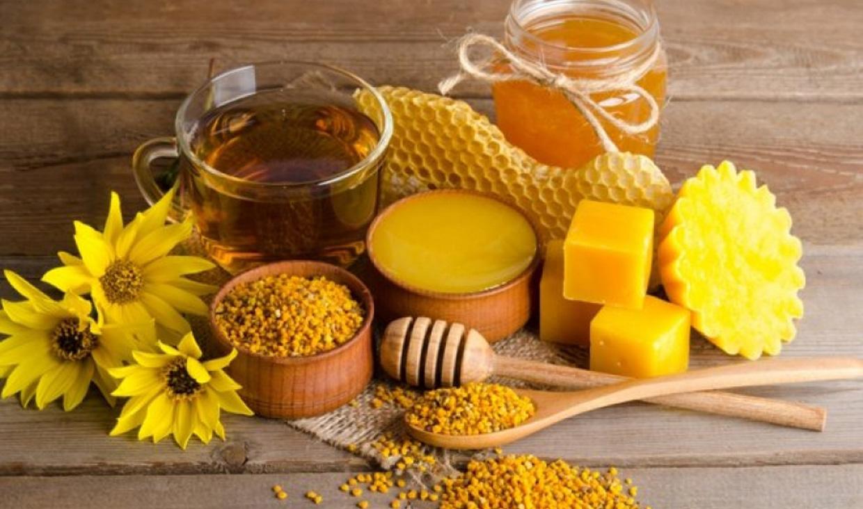 Дегустація продуктів бджільництва