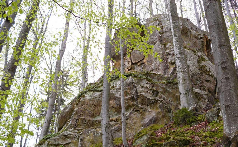Похід на хребет Брусний до Каменя Довбуша