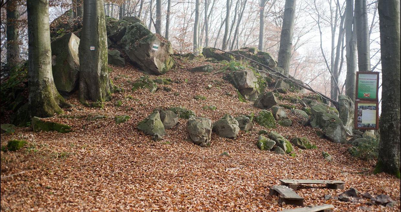 Похід на хребет Каменистий