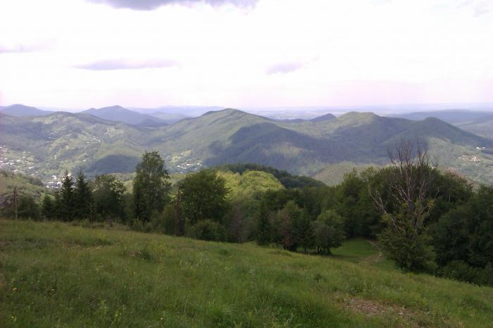 Похід на гору Михалків