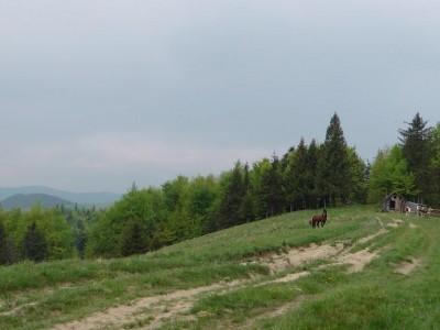 Село Баня-Березів — Косівський район