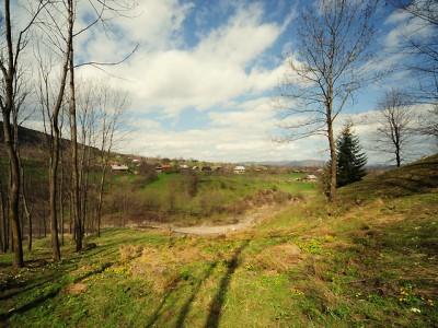 Село Вижній Березів — Косівський район