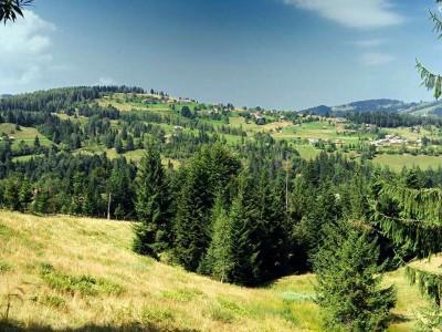 Село Шепіт — Косівський район
