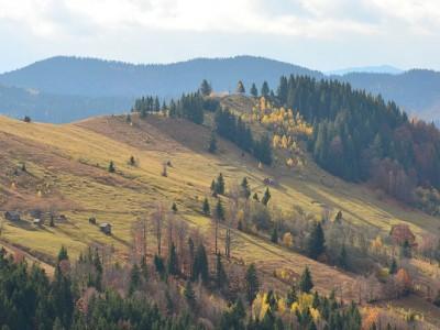 Село Яворів — Косівський район