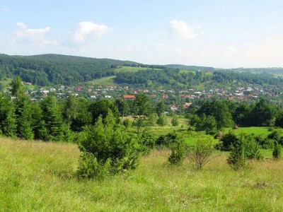Селище міського типу Яблунів — Косівський район